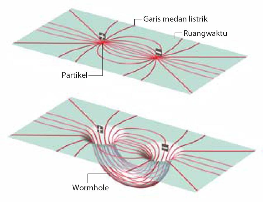 Simpul-simpul ruangwaktu, juga dikenal sebagai wormhole, menawarkan jalan lain untuk memperoleh mekanika quantum dari teori klasik. Partikel-partikel bermuatan listrik, alih-alih sebagai objek materil di mana garis medan elektromagnetik bermula [atas], boleh jadi hanyalah ilusi yang ditimbulkan wormhole [bawah].