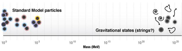Skala massa-energi terkait gravitasi (kanan) berada pada angka 17 orde magnitudo di luar skala partikel-partikel dikenal (kiri), di mana 1 GeV = 1.000 MeV. Kecenderungan massa-massa partikel untuk seimbang dalam kalkulasi membuat hirarki ini membingungkan. (Nelson Hsu untuk Quanta Magazine)